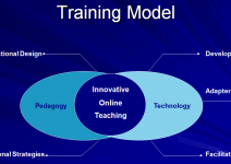 Faculty and Staff Training Model